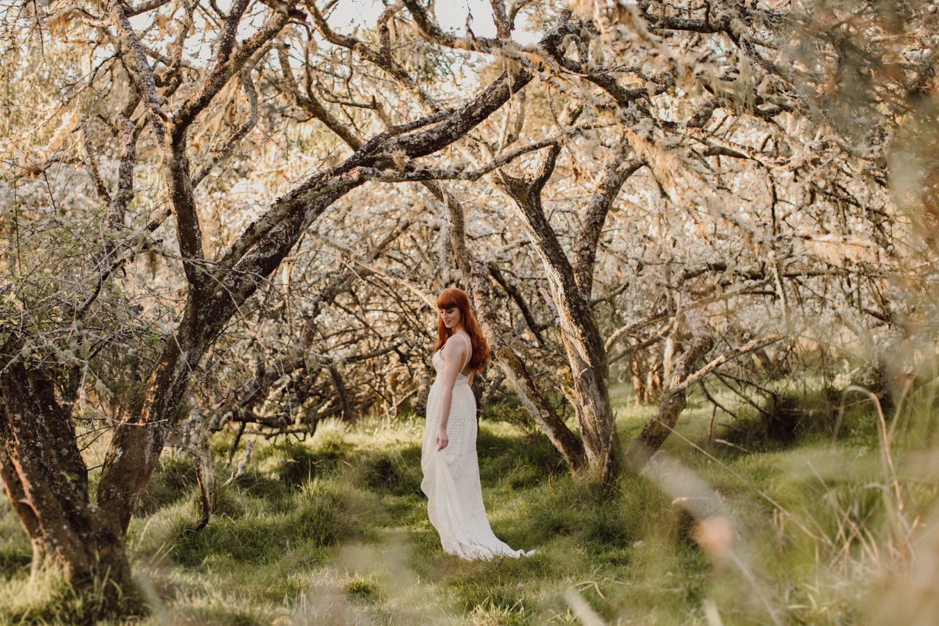 Bride walking away through trees in orchard